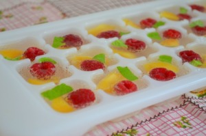fruit ice cubes 38_1